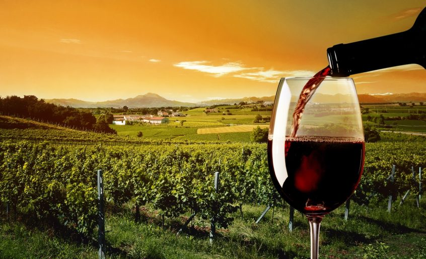 Bespoke Luxury Wine Tour